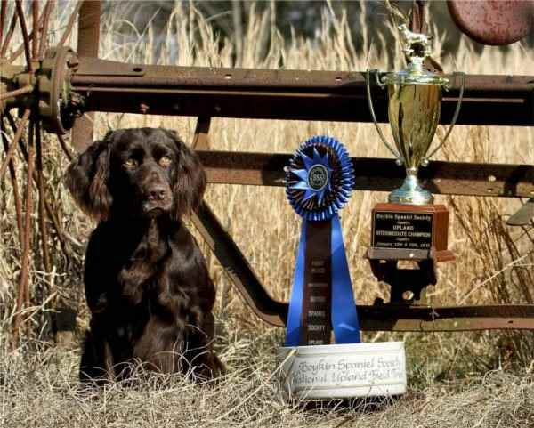Karoo_cropped_with_trophy_1827