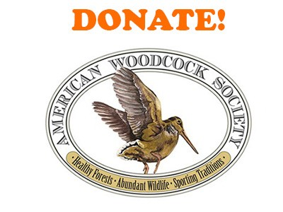 woodcocklogo-new-400x300